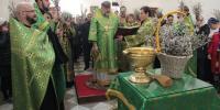 НЕДЕЛЯ ВАИЙ: в Благовещенском кафедральном соборе встретили праздник Входа Господня в Иерусалим